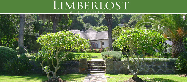 LIMBERLOST, WILDERNESS