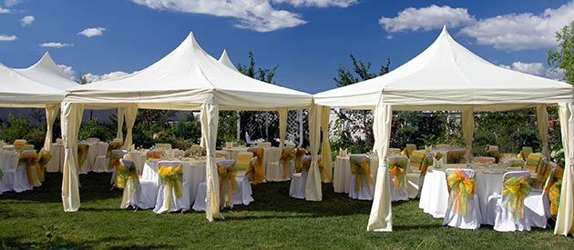 Wedding venues standerton mpumalanga news